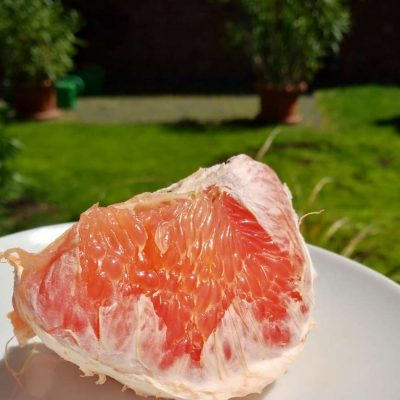 Power of Grapefruit