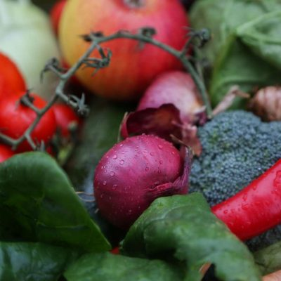 Gemüsekorb grün-rot-violette Antioxidantien